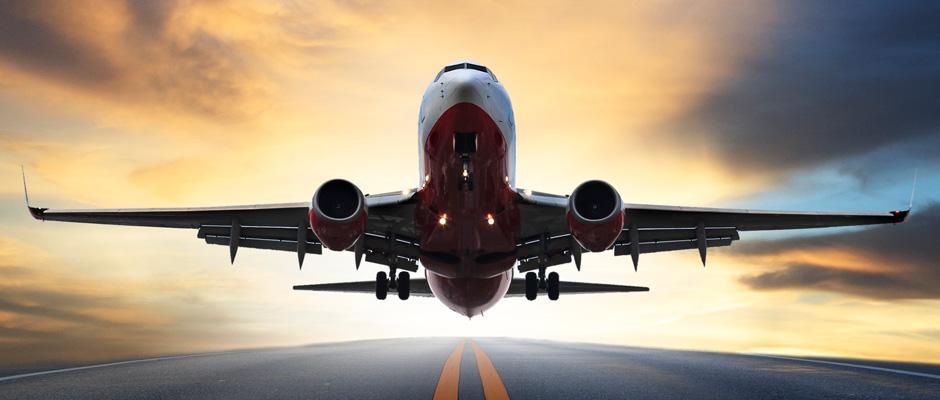 New Website Taking Flight